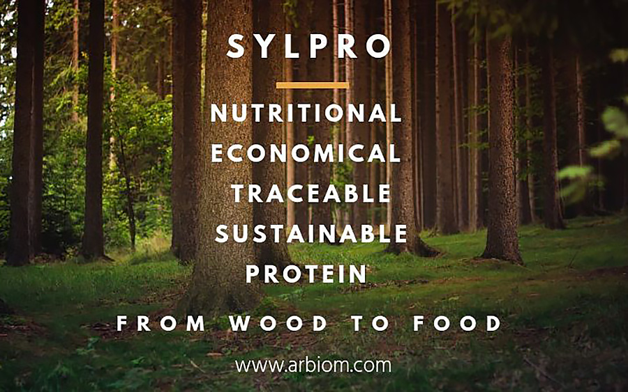 food from wood